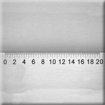 S-RL-6 Crack magnifier scale