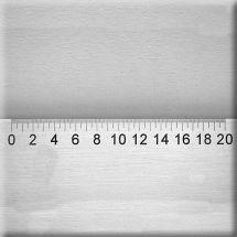 S-RL-6 Crack magnifier scale